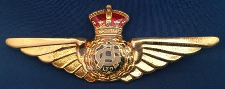 PILOT WINGS: Guinea Airways