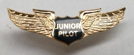 JUNIOR PILOT WING - LAPEL BADGE